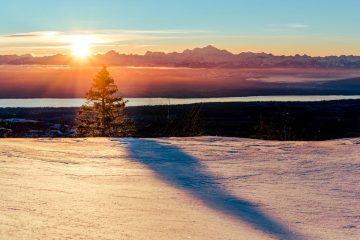 col de la faucille pays de gex ain france alpes alps rhone alpes mont blanc lac léman neige arbre soleil 01 snow mountain montagne summit jura