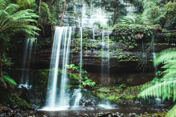 Russel Falls Mount Field National tas Park Tasmania tasmanie australia australie waterfall cascade nature foret sauvage eau pureté water green pose longue